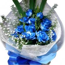 blue roses delivery 12 blue roses