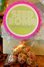 restlessrisa seed bombs