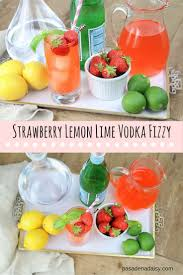 101 best drinks drinks drinks images on pinterest party drinks