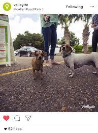 Memes Music Mcallen - 10 most instagrammed places in mcallen
