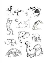 drawing animal pictures pencil drawings animals pencil sketch