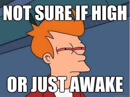 Meme Not Sure If - not sure if high or just awake high fry quickmeme