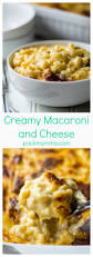 creamy macaroni and cheese pack momma