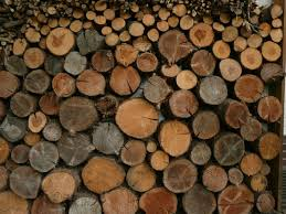 tree wood wall free stock photos rgbstock free stock images stack of wood