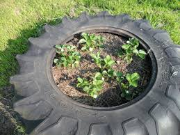 189 best tire gardens images on pinterest tire garden tire