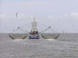 fishing vessel wikipedia