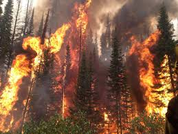 Wildfires Burning In Washington State by Wildfires In Washington Idaho Continue Challenging Crews Knkx