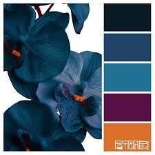 Blue Orange Color Scheme Best 25 Purple Color Schemes Ideas On Pinterest Purple Palette