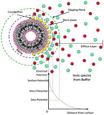 nanomaterials free full text soft interaction in liposome