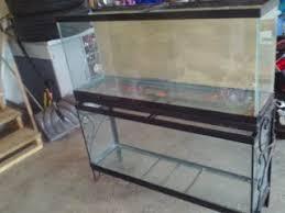 used glass tank aquariums and terrariums aquadicted