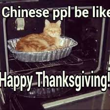 Thanksgiving Cat Meme - chinese people be like funny stuff pinterest humor funny