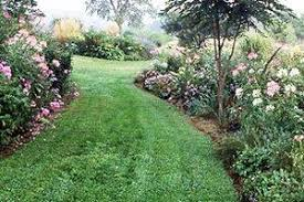 Average Cost Of Landscaping A Backyard 2017 Lawn Resloping Costs Average Price To Regrade A Yard