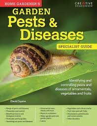 House Plants Diseases - home gardeners pests and diseases book by david squire