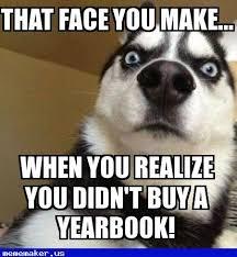 Meme Wolf - 85 best wolf meme creator images on pinterest wolf meme new