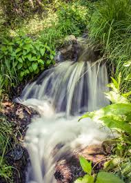 free images landscape nature forest grass rock waterfall