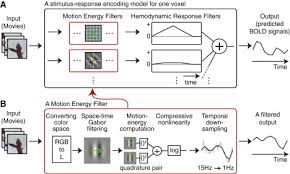 reconstructing visual experiences from brain activity evoked by
