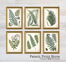vintage ferns prints botanical print art print fern prints
