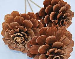 Pine Cone Home Decor Cedar Roses Pine Cones For Potpourri Wreaths And Floral