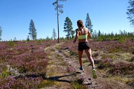 where the road ends a guide to trail running meghan hicks bryon