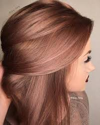 red brown long angled bobs image result for rose gold hair brunette angled bob my style