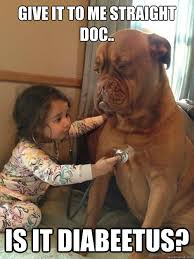 Sick Puppy Meme - related image cute pinterest sick dog dog memes and dog