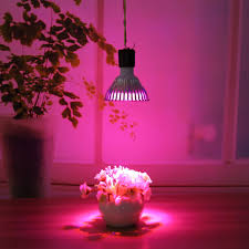 popular grow light bulb hydroponic garden indoor lamp buy cheap