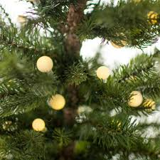 christmas tree prelit 3 pre lit black spruce small christmas tree 2838044gw
