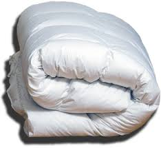 Goose Feather Down Comforter 750 Fill Power 100 Hungarian Goose Down Comforters