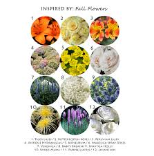 List Of Flowers by Inspired By Fall Flowers Lucas Eilers