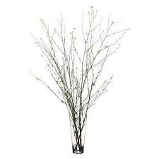 White Decorative Branches Vases Designs Decorative Branches For Vases Outstanding Simple