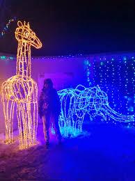 Zoo Lights Utah Hogle Zoo by Stacie U0027s Place Ii Hogle Zoo Lights