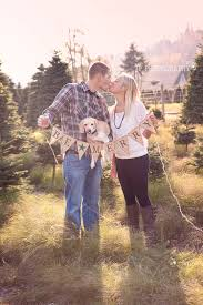 jp photography couples u0026 dog christmas photo tacoma wa tree farm