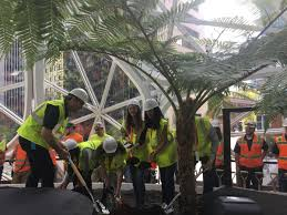 spheres in downtown seattle get plant knkx