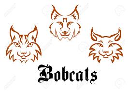 bobcat clipart lynx pencil and in color bobcat clipart lynx