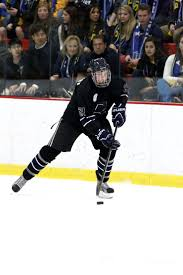 bentley college hockey 21 best air force falcons images on pinterest air force falcons