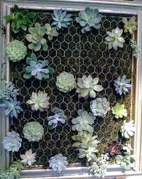 gift of the day diy vertical garden get it online joburg north