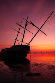 Bateau Bay New South Wales Wikipedia The 25 Best Abandoned Ships Ideas On Pinterest Shipwreck Ship