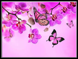 diy painting orchid butterflies pink resin products