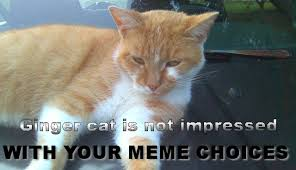 Ceiling Cat Meme - dr lindyke s blog spintunes 6 challenge ceiling cat is watching