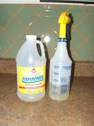 the cleaning everything you need to about