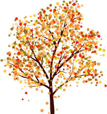 fall trees drawing autumn crafts fall trees