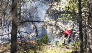 Wildfire Kootenays by Wildfire Grown To 30 Hectares In Size 24km Northwest Of Fernie