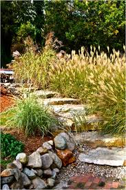 backyards modern 17 low maintenance landscaping ideas chris and