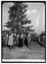 which president lit the white house tree