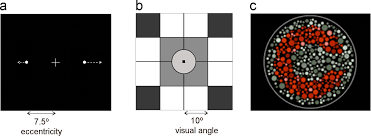 visual perception and reading new clues to patterns of