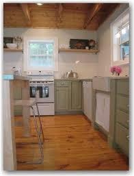 Green Cabinet Kitchen 19 Best Kitchen Images On Pinterest White Appliances Kitchen