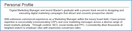 Ppc Resume Digital Marketing Cv Example With Writing Guide And Cv Template