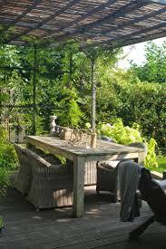230 best taxus perkje images on pinterest garden ideas