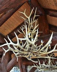 Antler Chandelier Net How To Build Antler Chandeliers Lovetoknow