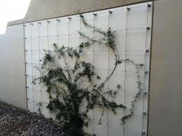 Stainless Steel Cable Trellis Landscapeonline New News Everyday U0026 When It Breaks